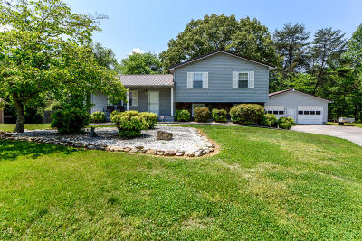 Maryville Single Family Home For Sale: 3026 Pleasant View Ave