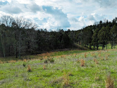 Russellville, Whitesburg Residential Lots & Land For Sale: Silver City Rd Rd