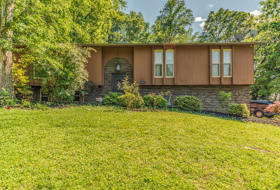 Knoxville Single Family Home For Sale: 121 Sanwood Rd