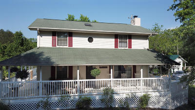 Sevierville Single Family Home For Sale: 535 Panther Creek Rd