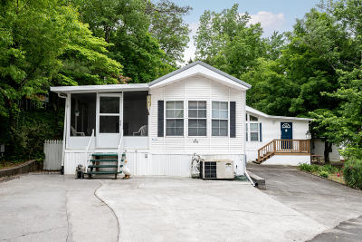 Townsend Single Family Home For Sale: 774 Big Valley Blvd
