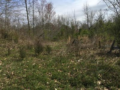 Bean Station Residential Lots & Land For Sale: 275 Hipsher Hollow Rd