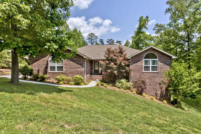 Andersonville Single Family Home For Sale: 185 Field Stone Drive