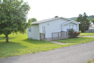 Seymour Single Family Home For Sale: 838 S Old Sevierville Pike