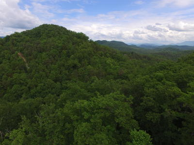 Sevierville Residential Lots & Land For Sale: Parcel 038.03 Bear Mountain Way