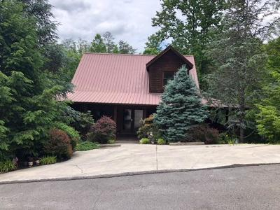 Sevierville Single Family Home For Sale: 1816 Skyhawk Lane
