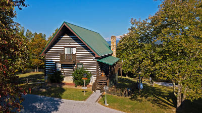 Sevierville Single Family Home For Sale: 3769 Thomas Cross Rd