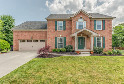 Knoxville Single Family Home For Sale: 734 Concord Farms Lane