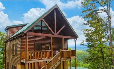 Sevierville Single Family Home For Sale: 2251 Upper Middle Creek Rd #H