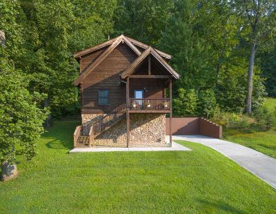 Single Family Home For Sale: 7013 Shalidar Drive