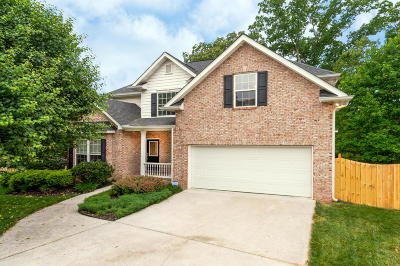 Knox County Single Family Home For Sale: 1307 Pershing Hill Lane
