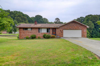 Knoxville Single Family Home For Sale: 5130 Dewine Circle