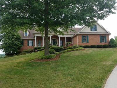 Friendsville Single Family Home For Sale: 718 Loudon View Drive