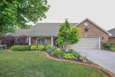 Maryville Single Family Home For Sale: 3942 Leyte Drive