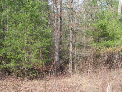 Fairfield Glade Residential Lots & Land For Sale: Lot 10 Forest View Drive