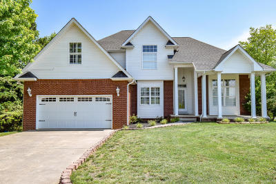 Dandridge Single Family Home For Sale: 842 Pinnacle Drive Drive
