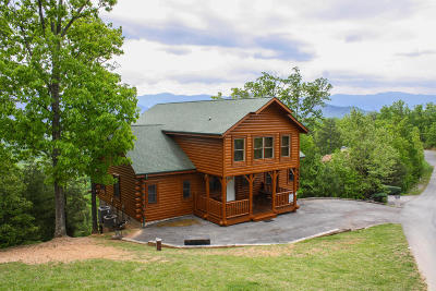 Sevierville Single Family Home For Sale: 4524 Stackstone Rd