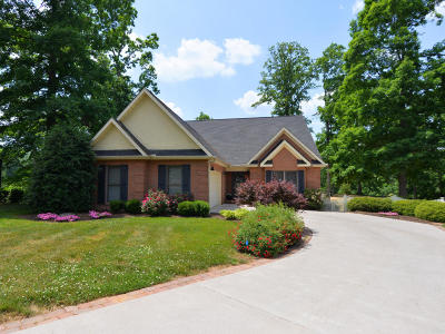 Lenoir City Single Family Home For Sale: 291 Valleyview Drive