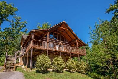 Sevierville Single Family Home For Sale: 1514 Bear Valley Dr