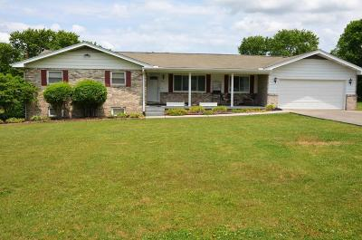Knoxville Single Family Home For Sale: 8621 Dolph Drive