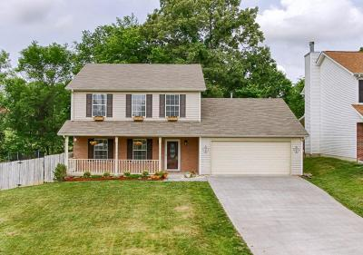 Knoxville Single Family Home For Sale: 831 Dowry Lane