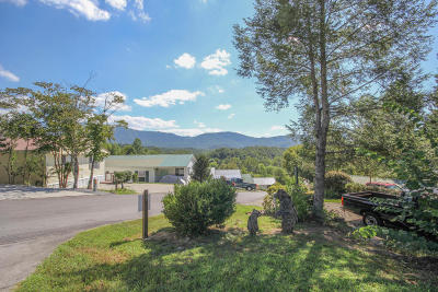 Residential Lots & Land Sold: 425 Mountain Thrush Drive