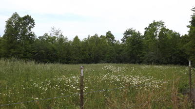 Residential Lots & Land For Sale: Evans Ridge Rd