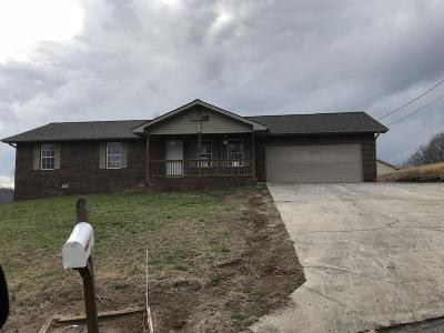 New Tazewell Single Family Home For Sale: 267 Michal Lane