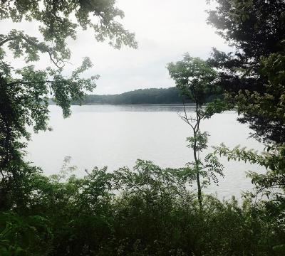 Meigs County, Rhea County, Roane County Residential Lots & Land For Sale: Serenity Dr. Lot 39