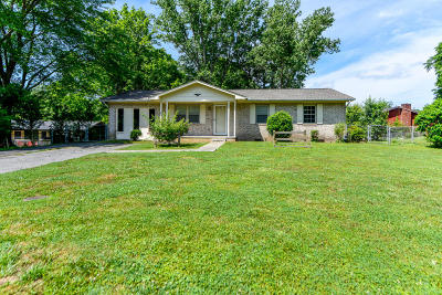 Oliver Springs Single Family Home For Sale: 101 Duncan Drive
