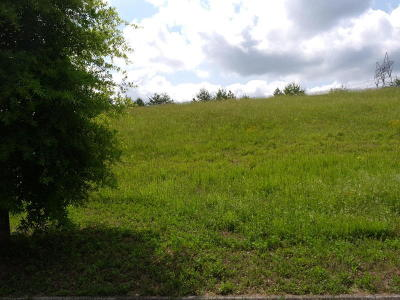 Anderson County Residential Lots & Land For Sale: 126 Galeberry Ave