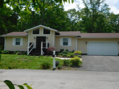 Speedwell Single Family Home For Sale: 135 Denise Drive