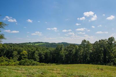 Knoxville TN Residential Lots & Land For Sale: $165,000