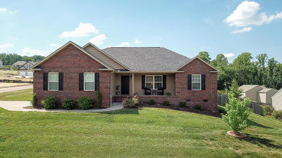 Knoxville Single Family Home For Sale: 6301 Altacrest Lane