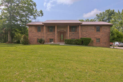 Knoxville Single Family Home For Sale: 8520 Millertown Pike