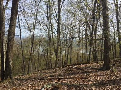 Mooresburg Residential Lots & Land For Sale: 1107 Keetoowah Drive