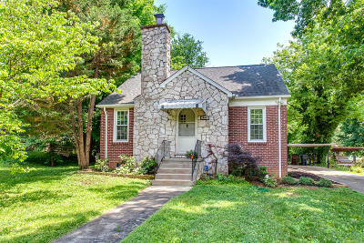 Knoxville Single Family Home For Sale: 438 McNabb Ave