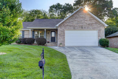 Knoxville Single Family Home For Sale: 2553 Pendelton Drive