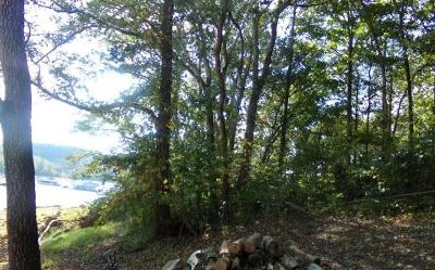 Anderson County, Campbell County, Claiborne County, Grainger County, Union County Residential Lots & Land For Sale: Bridle Way