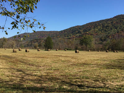 Pioneer Residential Lots & Land For Sale: 8374 Tennessee Hwy 297
