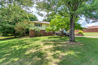 Knoxville Single Family Home For Sale: 7213 Chartwell Rd