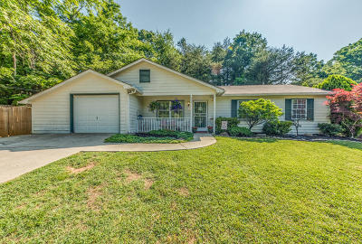 Knoxville Single Family Home For Sale: 4327 Larigo Drive