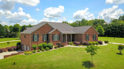 Maryville Single Family Home For Sale: 208 Pickering Circle