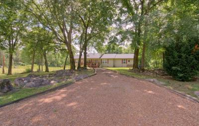 Corryton Single Family Home For Sale: 7717 Jim Wolfe Rd