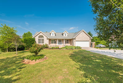 Greenback Single Family Home For Sale: 22175 E Coast Tellico Pkwy