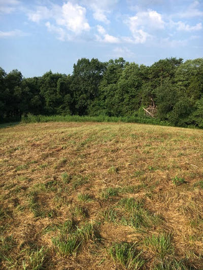 Union County Residential Lots & Land For Sale: Lakeridge Drive