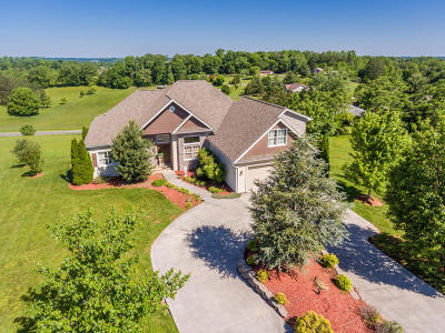 Sevierville Single Family Home For Sale: 1514 Oakley Manor Court