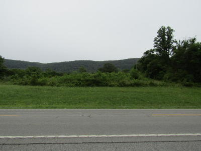 Claiborne County Residential Lots & Land For Sale: 6994 Highway 63