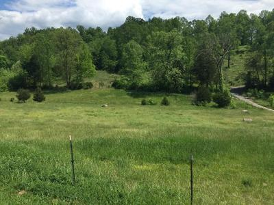 Union County Residential Lots & Land For Sale: 0 Maynardville Hwy