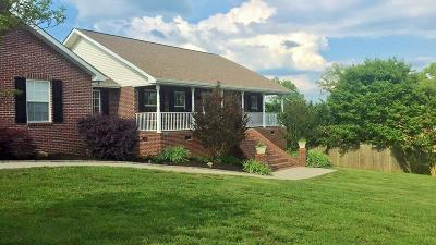 Sevierville Single Family Home For Sale: 1520 Tomahawk View Drive Drive